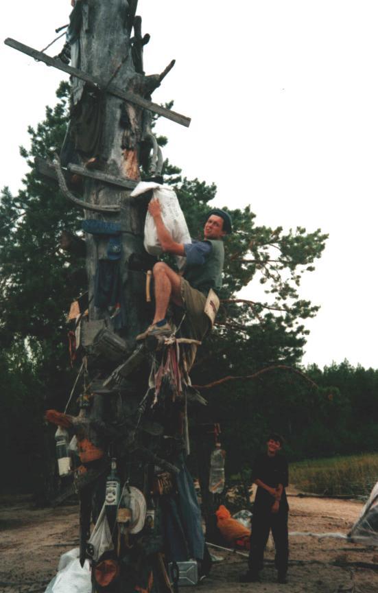 Сувенирное дерево